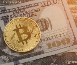 What are Bitcoin wallets and their types?
