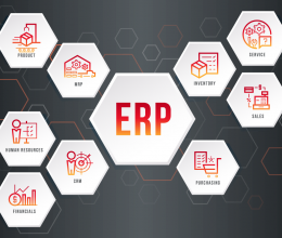 How to Get instant solutions for all business problems using ERP Software