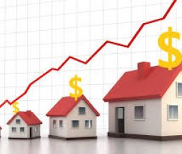 Have the effective tips and advice for property development